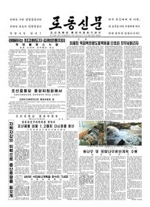 thumbnail of rodong-2017-06-25.pdf