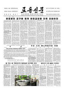 thumbnail of rodong-2017-10-16.pdf