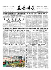 thumbnail of rodong-2018-11-20.pdf
