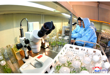 Bioengineering Branch of State Academy of Sciences