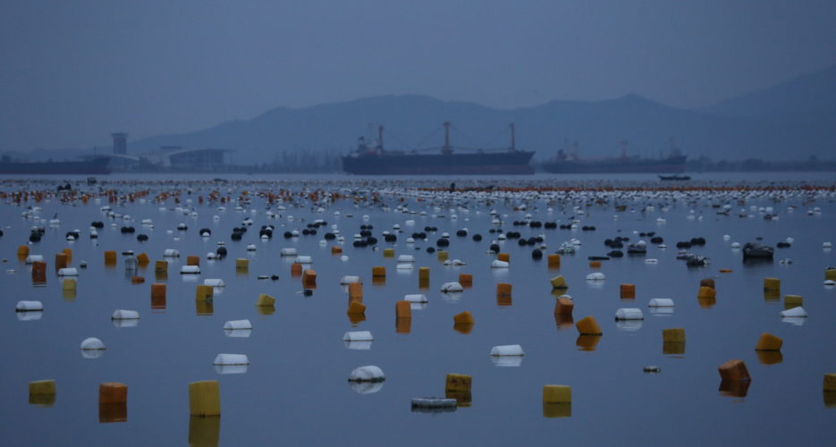 Sanctioned N. Korean vessel uses Russian port