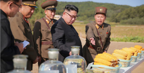 Kim Jong Un's September activities: portraying calm under pressure