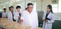 Kim Jong Un's public appearances in July: speedbattling on-the-spot guidances