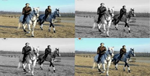 Similar background, different paths: comparing Kim Yo Jong and Kim Kyong Hui