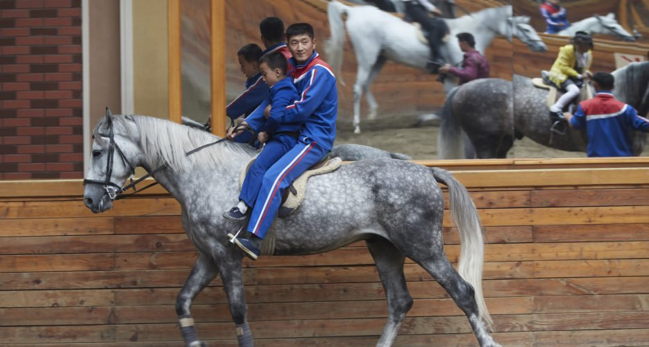 North Korea imported more Russian horses amid new work on elite equestrian parks