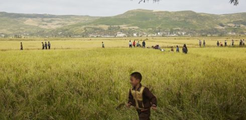 U.S. NGO wins sanctions exemption for North Korea agricultural projects