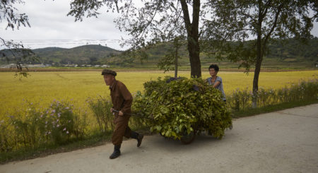 Russian exports to North Korea soared in April, new data shows