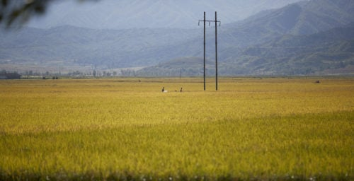 Big jump in Chinese exports to North Korea led by fertilizer, food