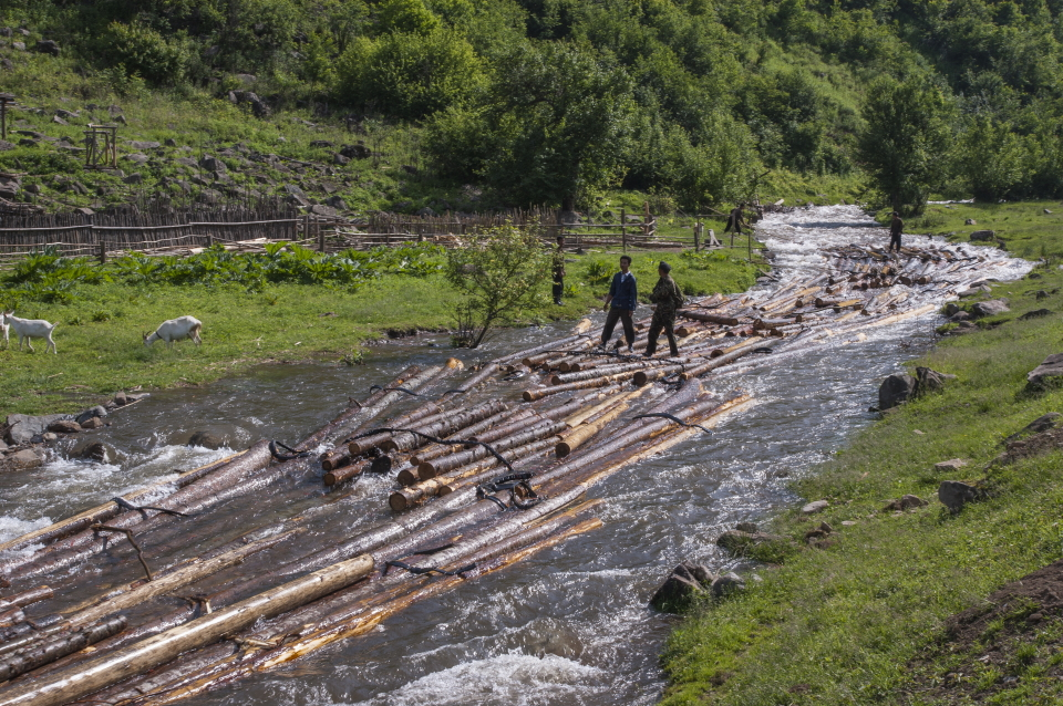 Men logging down a stream in Yangangdo, DPRK