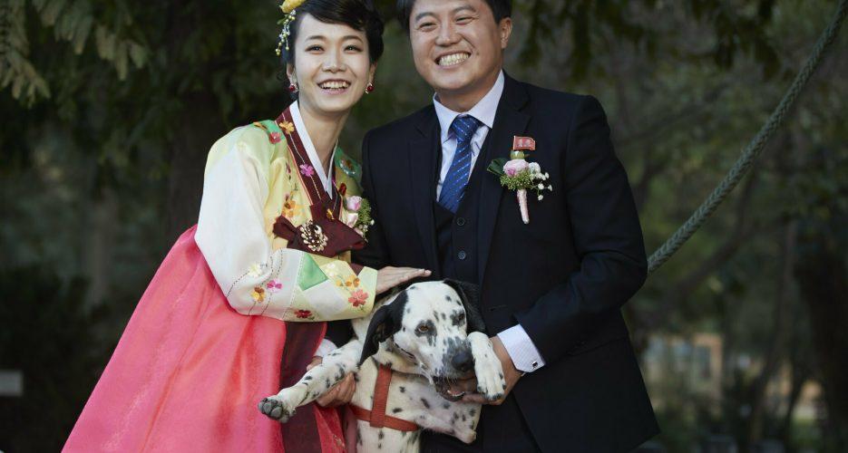 Perfect Match? North Korean Wives for South Korean men