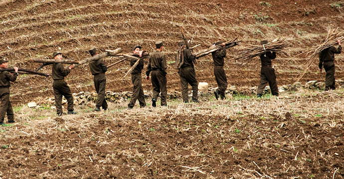soldiers-farming-northkorea