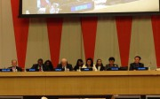North Korea participates in human rights event by activists