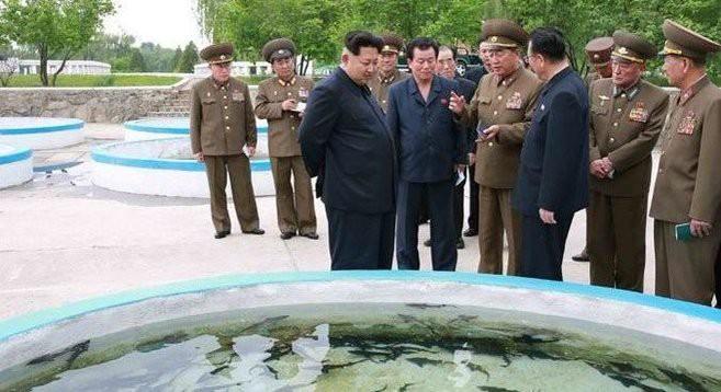 Kim Jong Un at Sinchang Fish Farm | Photo: KCNA