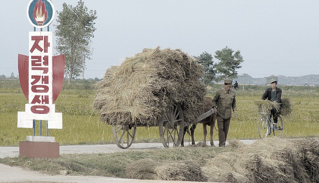 The Problems and Opportunities of Agricultural Practices in the DPRK