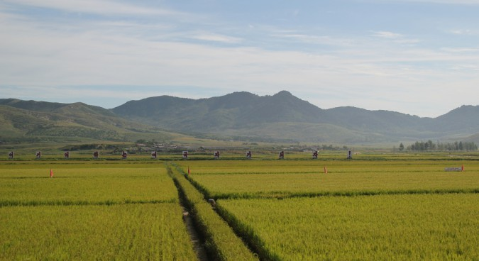 North Korean-Belarus cooperation to focus on agriculture: government source