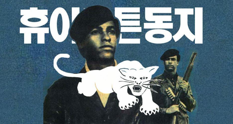 The Black Panther's Secret North Korean Fetish