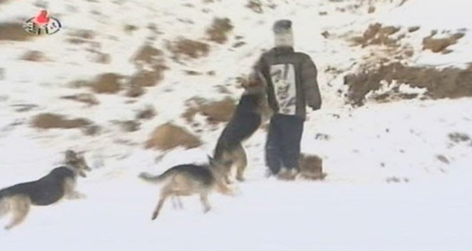 Rumor Jang Song Thaek was killed by hungry dogs re-emerges