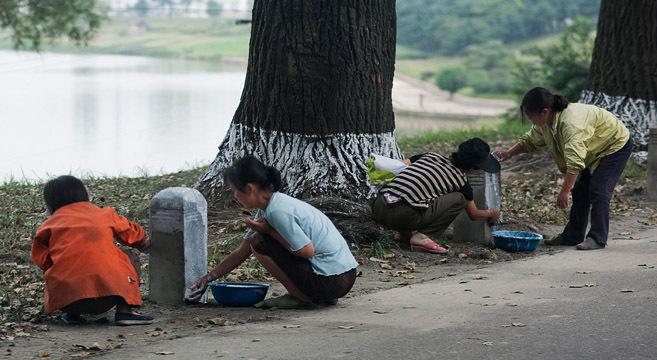 How much money do North Koreans make?