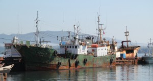 South, North Korean ships collide in east sea – KCNA