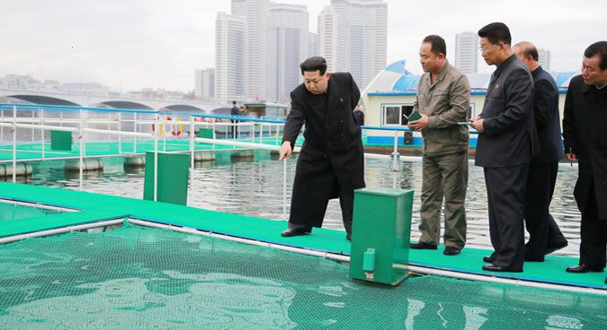 November: N. Korean regime shows leadership stability, emphasizes fishing