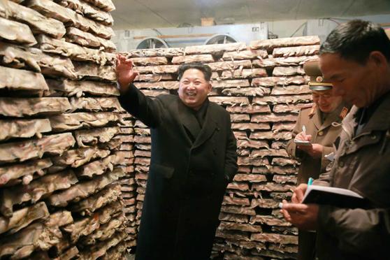 North Korea's utopian sea flavor of socialism
