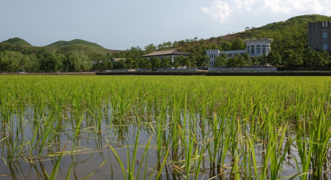 Green revolution? Sustainable development in North Korea