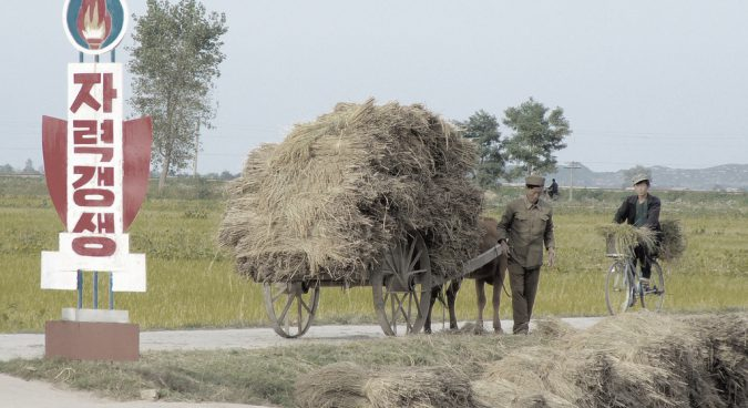 north korea farming photo