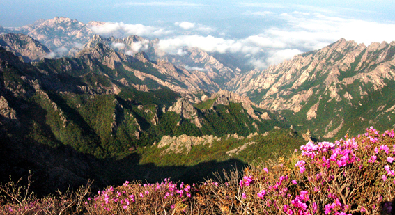 North Korea seeking investment for new Mt. Kumgang area hotel project