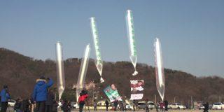 Seoul tells activists to