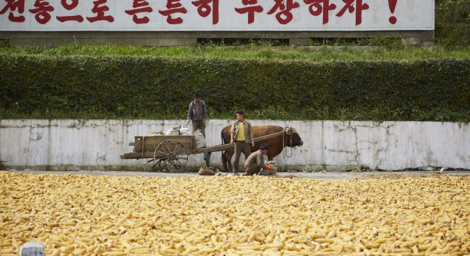 How N. Korean literature offers hints at major agricultural reforms taking place