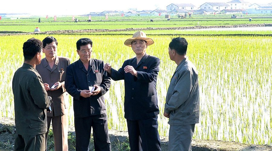 North Korean Premier admits to failures in country's agricultural sector