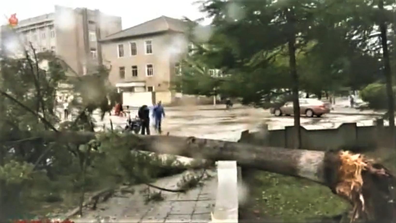 Typhoon damage in North Korea leaves five dead, hundreds of homes destroyed: KCNA
