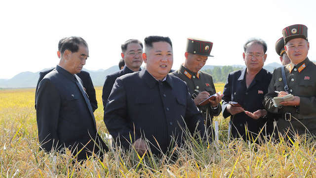 Kim Jong Un tours military-run farm in first appearance in almost a month