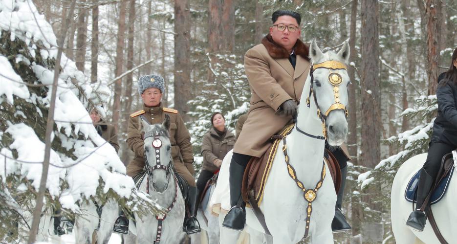 North Korea imported a dozen purebred horses from Russia last year, data shows