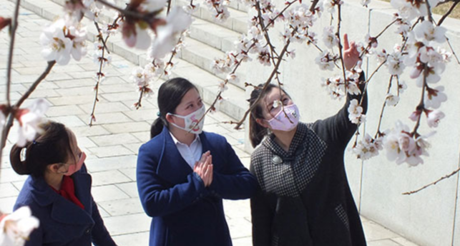 500 people remain under quarantine in North Korea, state media says