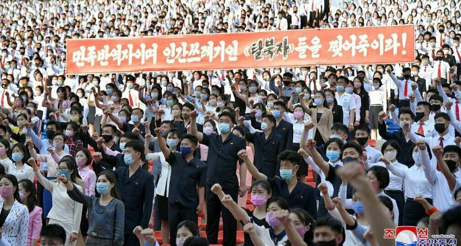 North Korea commences major anti-South Korea campaign on defector leaflets