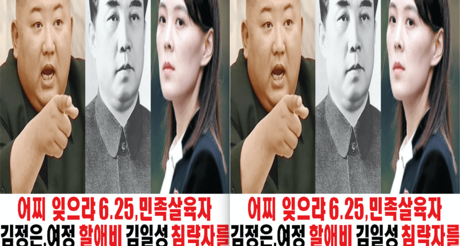Defector group likely failed to send leaflets into North Korea, South says
