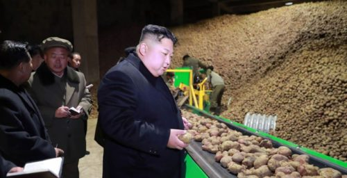 North Korea has a pop culture obsession with potatoes, and it's a dangerous sign