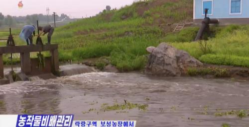 North Korea reports heavy rain, warns of 'inevitable' typhoons