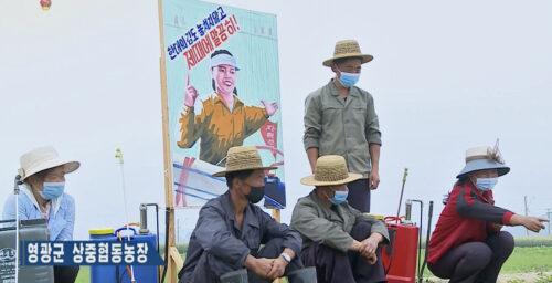 North Korea delays major farmers' meeting amid 'food crisis,' drought fears