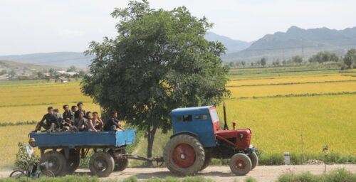 North Korean provinces see 'dramatic' decline in crop health: report