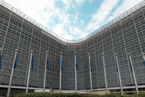First North Korean delegation to attend EU-related meetings since pandemic began
