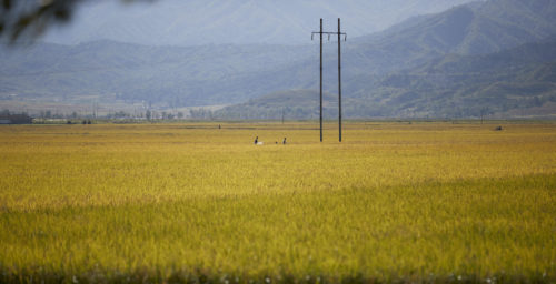 Big jump in Chinese exports to North Korea lead by fertilizer, food